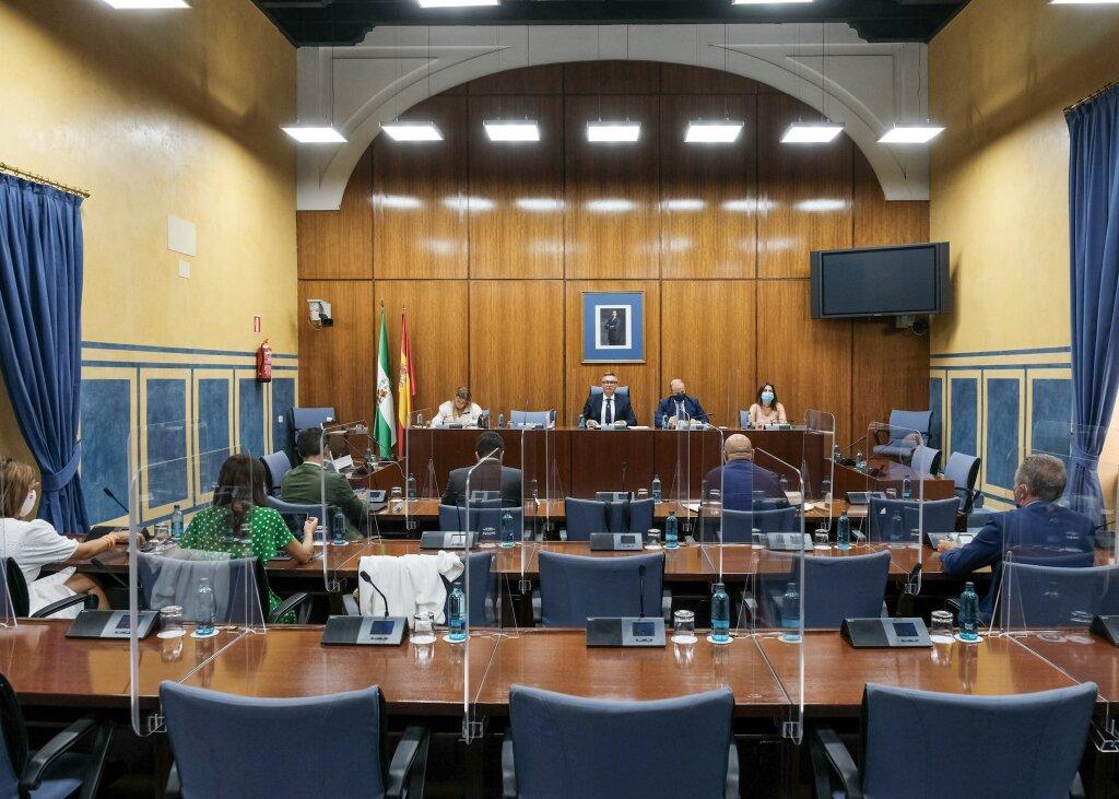 Comisión Andalucía